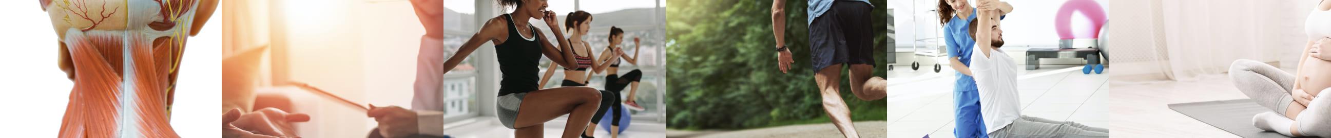 fitness講義のイメージ画像